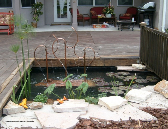 Deck-with-pond-and-water-feature-waterplants-garden-center-tv-lisa-burns