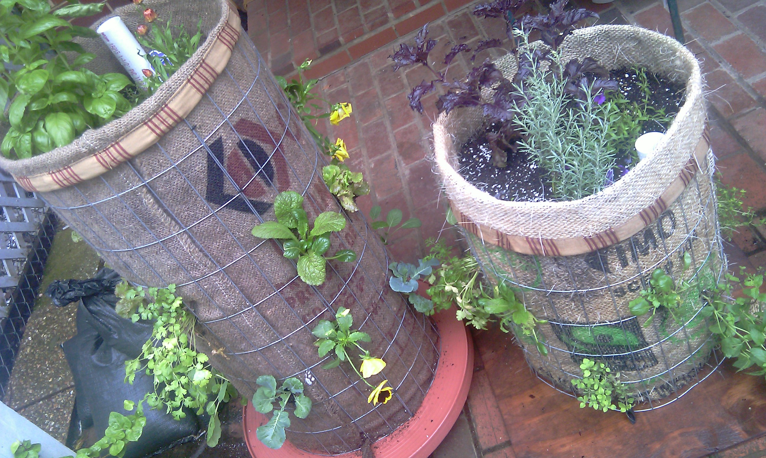 Vertical Home Gardens With Phytopod Growing Containers Garden