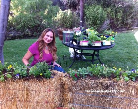 Shirley-Bovshow-Straw-Bale-Planter-Home-and-Family