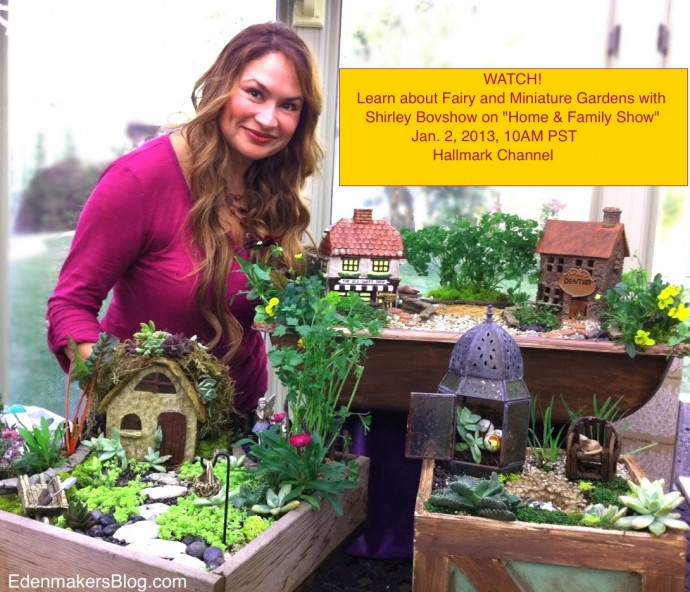 Fairy and miniature gardens on home family show Home and garden tv channel