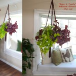 shirley-bovshow's instant and lightweight hanging-indoor-garden planters