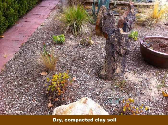 Compacted-clay-soil-in-garden-garden-center-tv