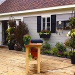 Deck-Container-Garden-With-Low-Water-Plants-by-Shirley-Bovshow