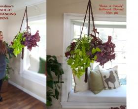shirley-bovshow's instant and lightweight hanging-indoor-garden planters